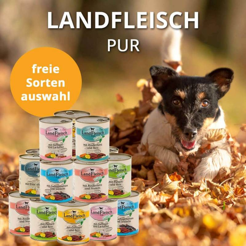 https://www.leckerchen24.de/Landfleischmonatsaktion