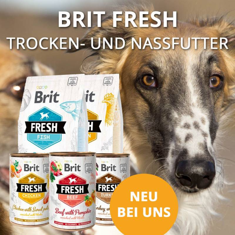 https://www.leckerchen24.de/britfresh-monatsaktion