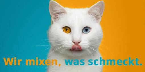 media/image/Mixenwasschmeckt-Katze.jpg