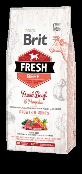 Brit Fresh Puppy Beef 2 x 12kg Spardoppelpack Premium